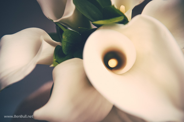 wedding-photography-parklands-quendon-hall-essex-2